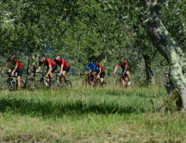 Elevate Cycling Tours in the hills - ChronòPlus