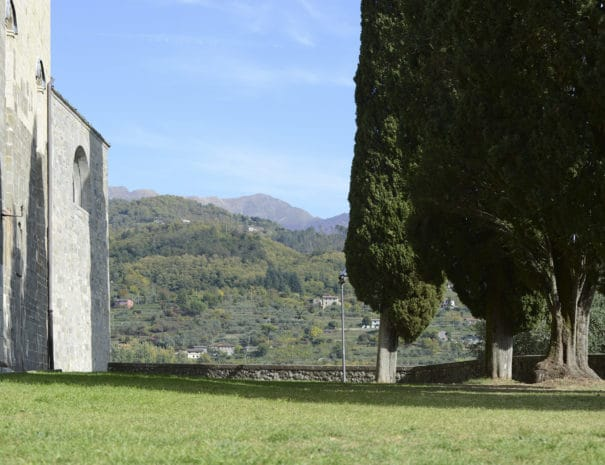 Lucca_to_Assisi_Bike_Tour_views